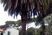 casa_quercianella_esterno_11.jpg