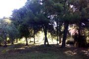 casa_quercianella_esterno_30.jpg