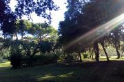 casa_quercianella_esterno_31.jpg